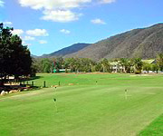 Golf Palm Cove Australia